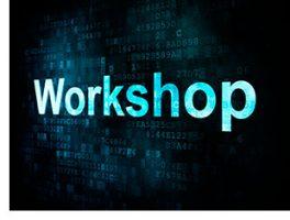 VI Workshop del Banc d'Instruments del Cibersam